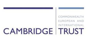 Cambridge Trust Scholarship (Undergraduate & Graduate) 2020-2021 for International Students