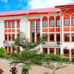 Nigerian Turkish International Colleges, Abuja view